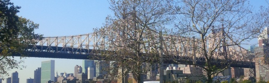 the Queensborough Bridge